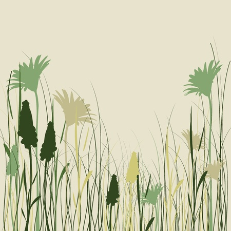 oat field: Silhouette flowers and grass in green colors