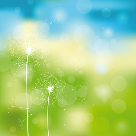 dandelion abstract: Green and blue light abstract background with dandelions
