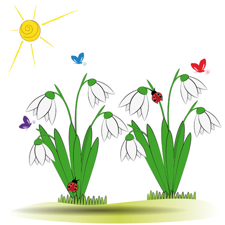 Cute spring background with snowdrops and buttersfly Vector