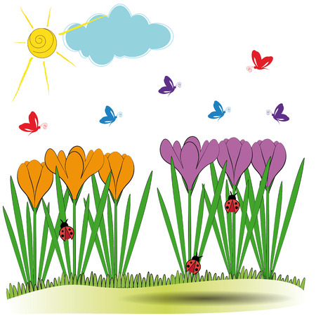 Cute spring background with orange and violet crocuses Vector