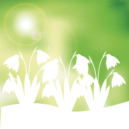 Green and yellow spring background with sunlight Stock Vector - 24913998