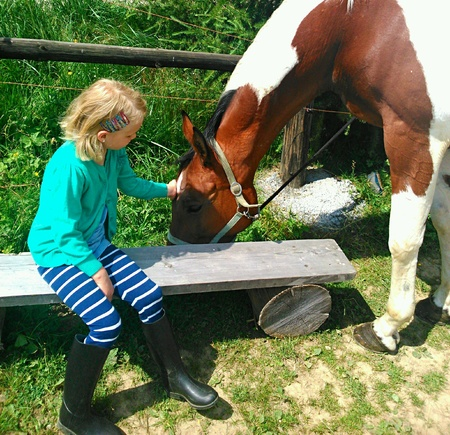 girl on horse: Small girl and horse