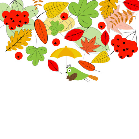 autumn leafs: Card with colorful autumn leafs and bird