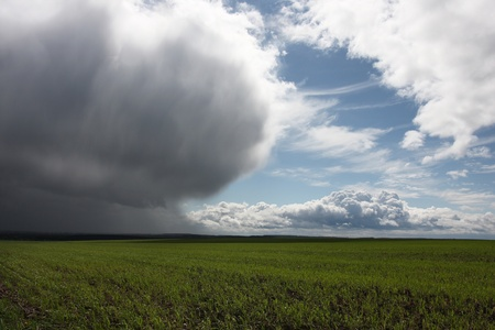 storm cloud: Storm cloud and sun over green field