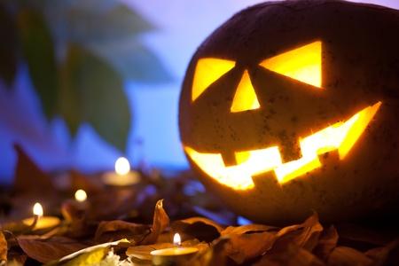 Still life with halloween pumpkin 免版税图像
