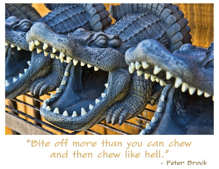 Snapping ceramic alligators with quote