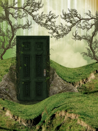 fantastic: Magic door in the field with ivy