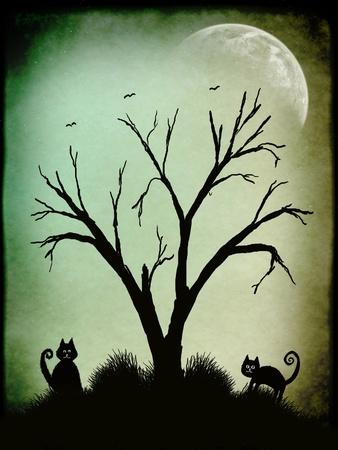 Los gatos y los árboles en silueta en un nigth oscura