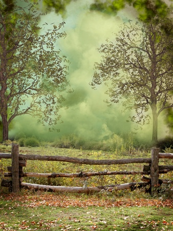 fairytale background: Fantasy and dreamy landscape in the forest
