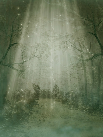 Fantasy forest with fog and big trees Stock Photo