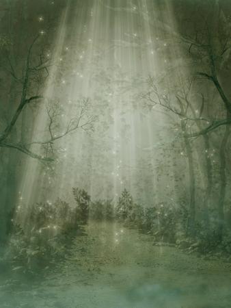 Fantasy foresta di nebbia e di grandi alberi Archivio Fotografico