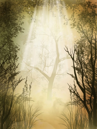 fairytale background: Fantasy charming  golden fairy forest with fog
