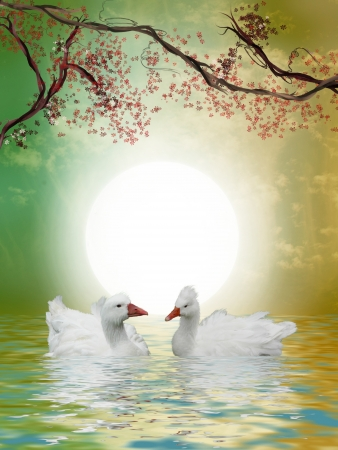 Ducks in the lake with tree and flowers Stock Photo