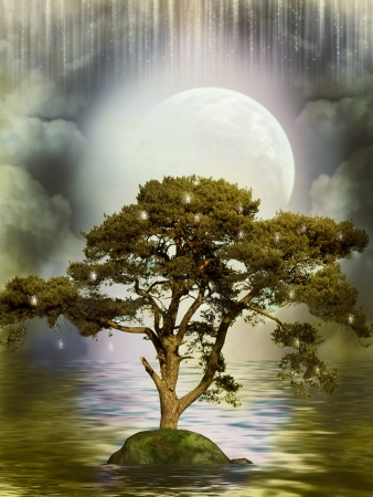 Tree reflection in the ocean in a peaceful night