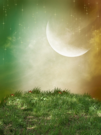 Fantasy landscape with grass and a big moon photo