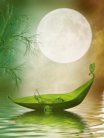 fairytale: Fantasy leaf boat in the lake at the nigth
