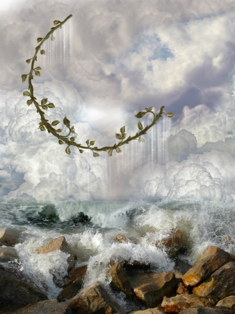 Ivy moon over the ocean with rocks photo