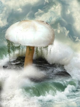 Fantasy mushroom in the sea over a big rock