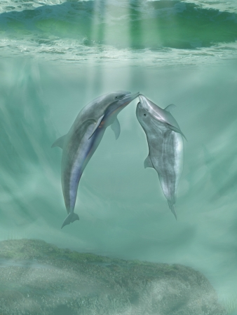dolphins dancing and play in the ocean photo