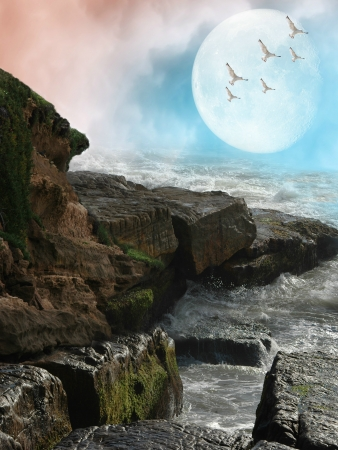 Fantasy Landscape with rocks and birds photo