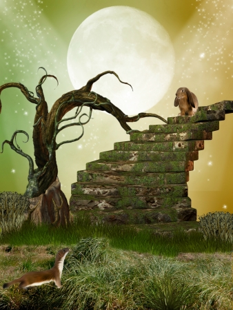 fantasy garden with tree  stairway and rabbit photo