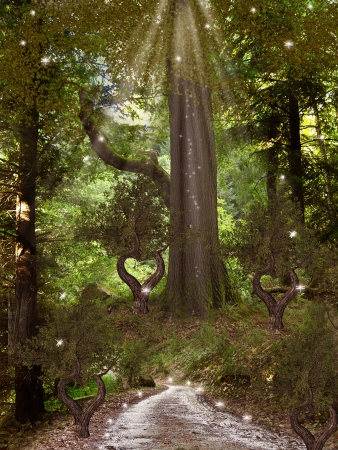 mystical forest: Magic Forest with trees dragonfly and path