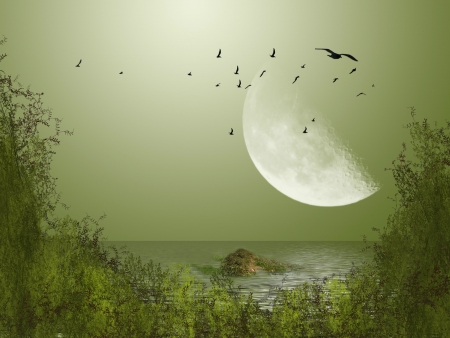 Big moon with birds in the lake