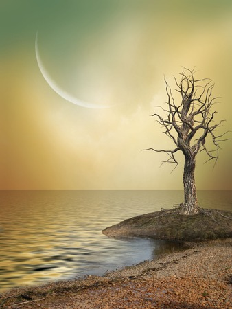 fairytale background: Fantasy Landscape with big moon and tree