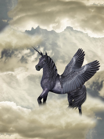Fantasy Horse black pegasus in the heaven  photo