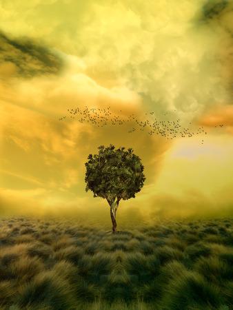 soledad: �rbol de la soledad en un campo de la fantas�a