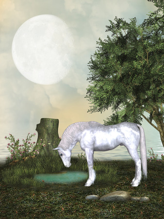scenario: Fantasy landscape with withe horse in a pond Stock Photo