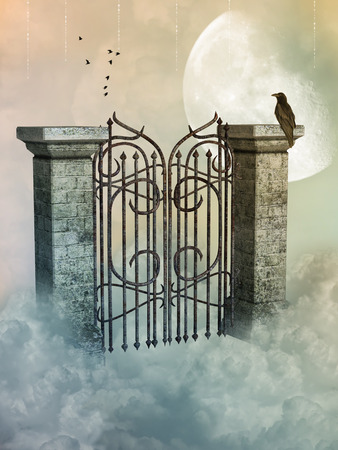 heaven: gate in the heaven with black bird