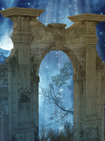 fable: Magic door in the forest with stars