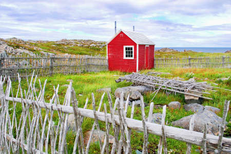 nfld: Cape Bona Vista, Newfoundland