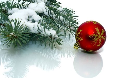 up close image: Snowy pine Christmas decorations on a white background.