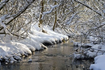 Forest Creek and snowy forest. photo