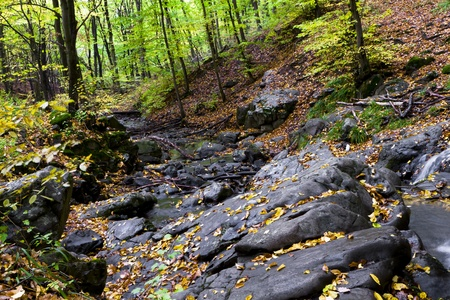 Mountain stream in the rocks of the beautiful autumn forest. photo