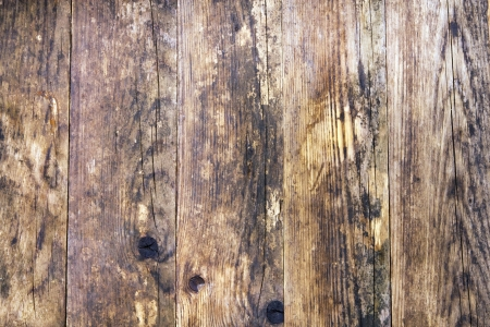 Natural old pine wood floors  photo