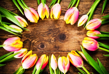 Tulips in old wood background  photo