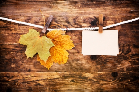 Notebook and leaves the wood background Stock Photo - 25445570