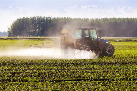 Tractor agrícola rociar un campo.