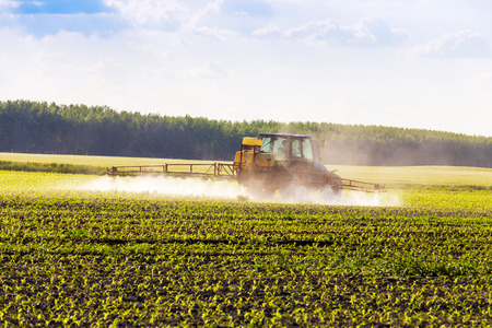In spring, the corn is sprayed on the tractor. photo