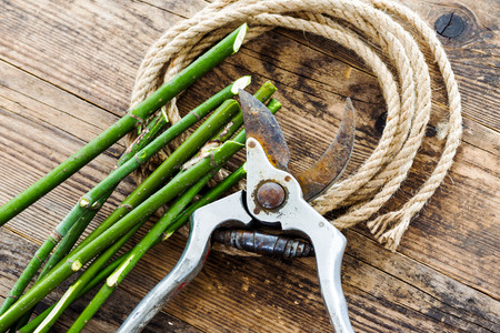 pack string: Pruning shears and rope on wood background tree branches. Stock Photo