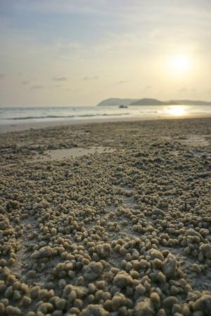 quasi: Beach with sunset