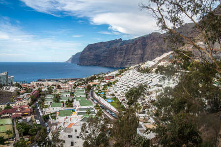 canary: Los Gigantes town, Tenerife, Canary Islands, Spain