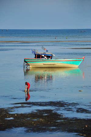 fish star: un ni�o en la camisa roja est� recogiendo peces estrellas en la playa de la isla Phu Quoc - vietnam  Foto de archivo