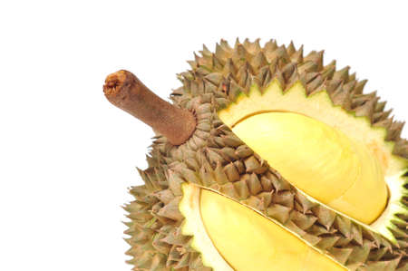 Durian from Thailand on the white background Stock Photo - 7957472
