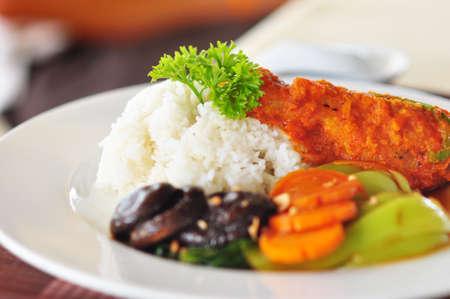seleccionado de pollo frito con teasty souce y servido con vetgetable y arroz. Foto de archivo