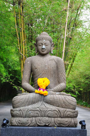 the stone buddha in the bamboo forest photo
