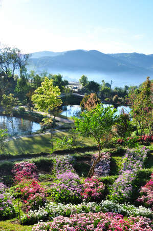 the garden of heven in the north of thailand Stock Photo